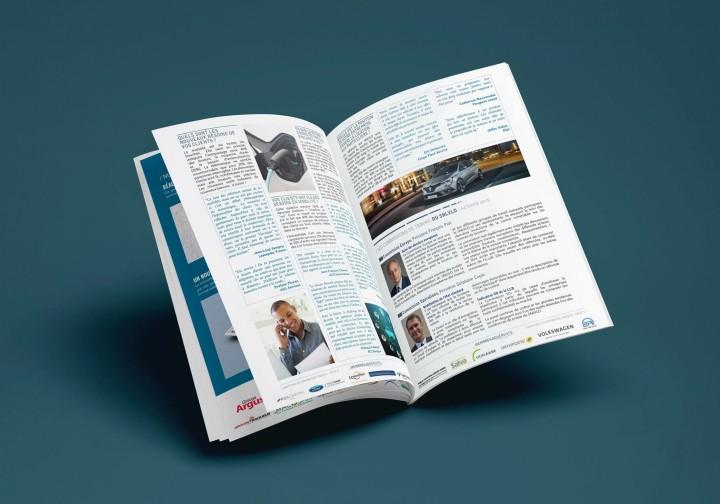 SNLVLD - Bilan annuel - création et mise en page - infographie